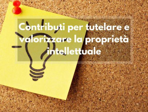 Contributi proprietà intellettuale