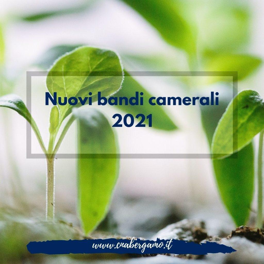 Bandi CCIAA 2021